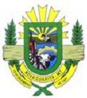 Prefeitura de Nova Guarita - MT retifica o edital nº 001/2010