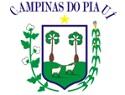 Processo Seletivo é anunciado pelo CMDCA de Campinas do Piauí - PI