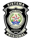 SEAP - MG anuncia Processo Seletivo para o cargo de Agente de Segurança Penitenciário