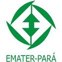 Emater - PA divulga novo Processo Seletivo para profissionais de ensino médio e superior