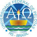 UFPel - RS abre 3 vagas para Professor Substituto de diferentes áreas