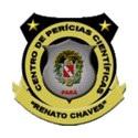 Centro de Perícias Científicas Renato Chaves - PA anuncia futura realização de Processo Seletivo