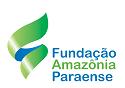 Fapespa - PA retifica edital de reabertura do concurso nº 01/2013 com 86 vagas