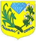 Prefeitura de Tenente Ananias - RN anuncia Processo Seletivo