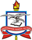 UFPA inicia Processo Seletivo para Professor Visitante