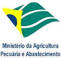 MAPA divulga edital do Processo Seletivo com 300 vagas
