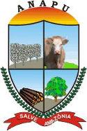 Prefeitura de Anapu - PA retifica Processo Seletivo para Assistente de Alfabetização