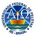 Oportunidade para Professor Auxiliar e Assistente na UFPel - RS