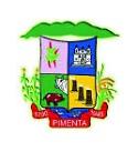 Câmara de Pimenta - MG anuncia Concurso Público com 3 oportunidades