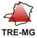 TRE - MG: Graduandos têm oportunidade de Estágio em Processos Seletivos