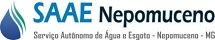SAAE de Nepomuceno - MG divulga a retificação do Concurso Público