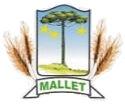 Processo Seletivo com dez oportunidades é anunciado pela Prefeitura de Mallet - PR