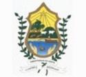 Processo Seletivo de nível superior é divulgado pela Prefeitura de Pimenteiras do Oeste - RO