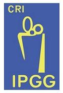 IPGG - SP prorroga pela 5ª vez as inscrições do edital 012/2013 com vagas para Médico