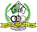 CMDCA do município de Várzea da Palma - MG realiza Processo Seletivo