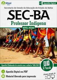 Professor Indígena - SEC - BA