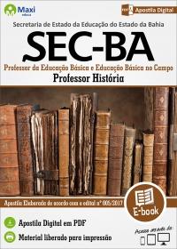 Professor - História - SEC - BA