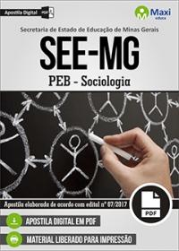 Professor de Educação Básica - Sociologia - SEE-MG