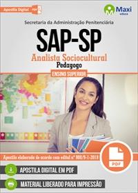 Analista Sociocultural - Pedagogo - SAP-SP