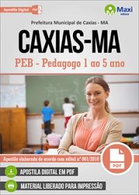 PEB - Pedagogo 1 ao 5 ano - Prefeitura de Caxias - MA
