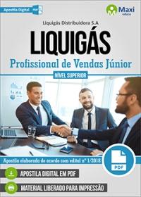 Profissional de Vendas Júnior - LIQUIGÁS