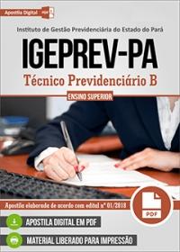 Técnico Previdenciário B - IGEPREV-PA