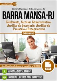 Auxiliar Administrativo - Câmara de Barra Mansa - RJ