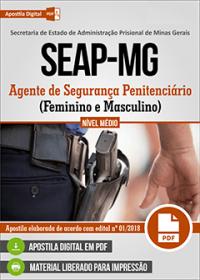 Agente de Segurança Penitenciário - SEAP-MG