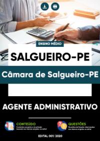Agente Administrativo - Câmara de Salgueiro-PE