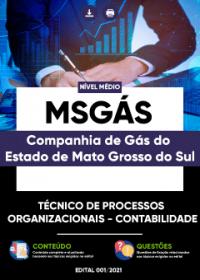 Técnico de Processos Organizacionais Contabilidade - MSGÁS