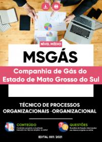 Técnico de Processos Organizacionais Organizacional - MSGÁS
