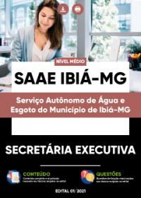 Secretária Executiva - SAAE Ibiá-MG