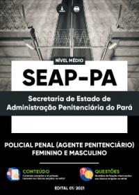 Policial Penal (Agente Penitenciário) - SEAP-PA