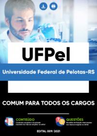 Comum para todos os Cargos - UFPel