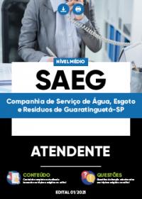 Atendente - SAEG