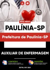 Auxiliar de Enfermagem - Prefeitura de Paulínia-SP