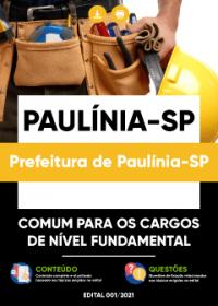 Comum aos cargos de Nível Fundamental - Prefeitura de Paulínia-SP